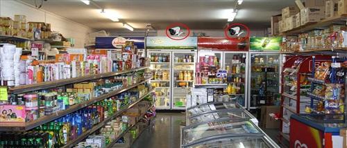 Lắp đặt camera cho cửa hàng cần đảm bảo yêu cầu giám sát tốt 24/24h